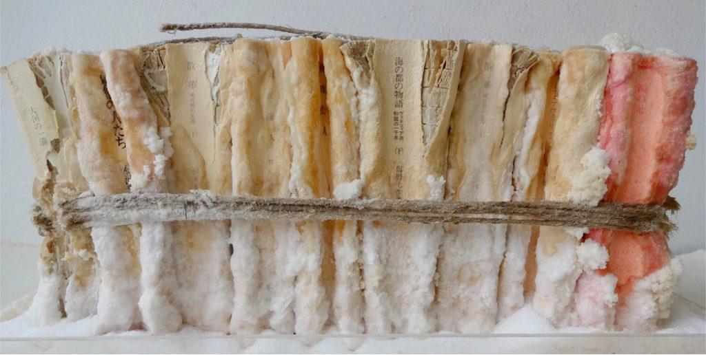 books in salt